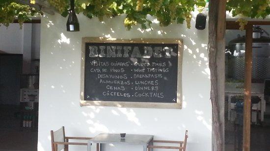 Bodegas Binifadet: Relajación