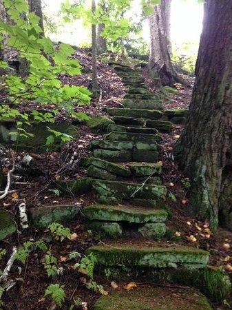 Pinehurst Inn Bed and Breakfast: Hike on the grounds