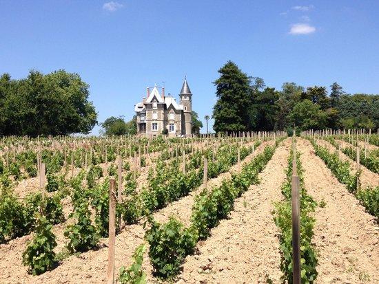 Chateau Breduriere