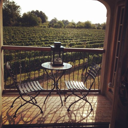 Sannino Vineyard B and B: View from the lovely Tuscan suite