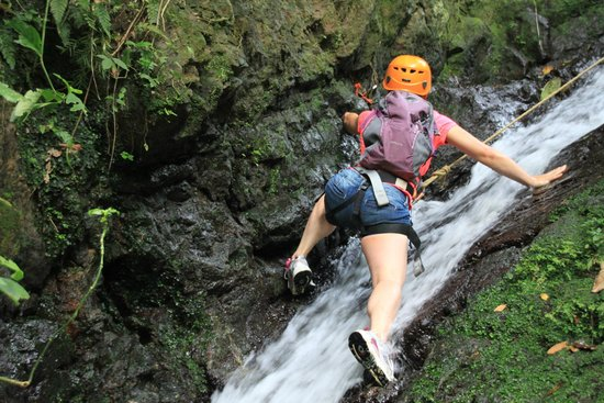 Acampa Nature Adventure Tours