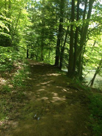 Mohican State Park: Firetower Trail