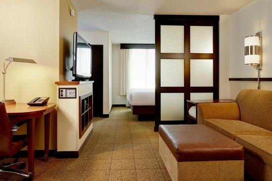 Hyatt Place Ft. Lauderdale Airport & Cruise Port : King Guestroom