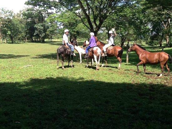 Tilajari Hotel Resort : lovely horseback riding nearby
