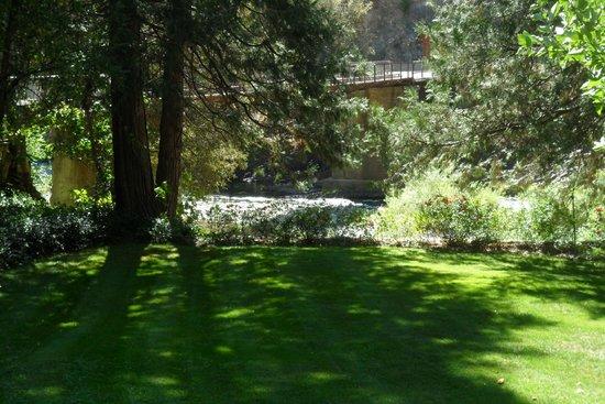 Lure Resort: Resort Grounds