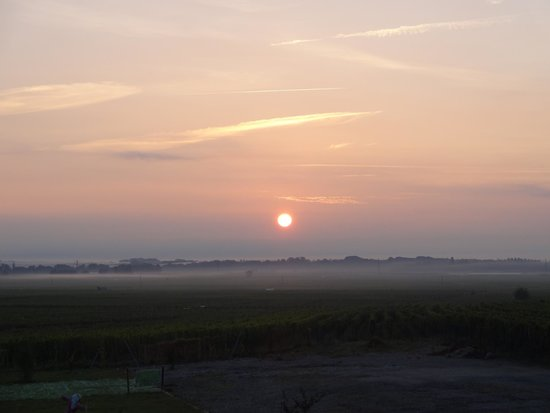 Hotel L'Oraye : Morning over the vineyards
