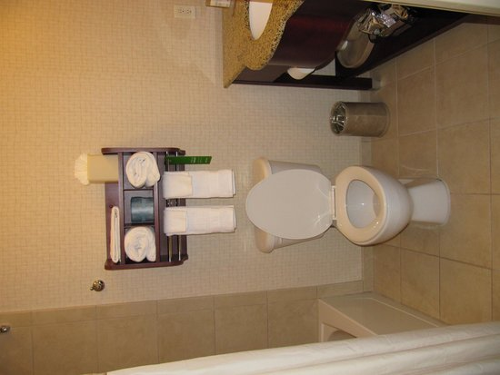 Hampton Inn Silver Spring: bathroom