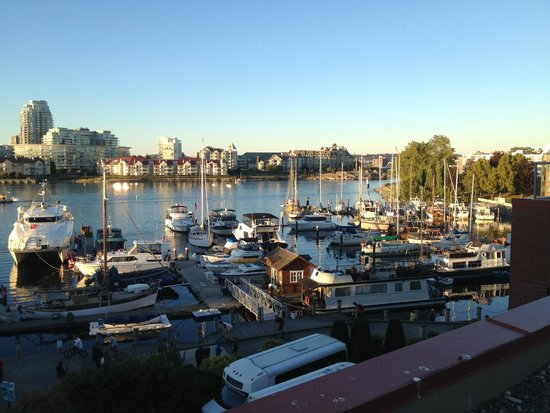 Coast Victoria Harbourside Hotel & Marina: View from Habourside rooms
