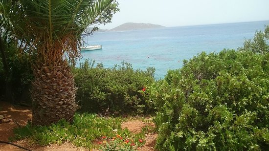 Elounda Mare Relais & Chateaux hotel: Вид из сада