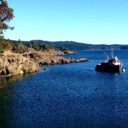 Best Orcas Island Lodging