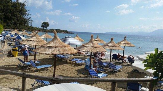 Ammoudara Beach Hotel : Morning views