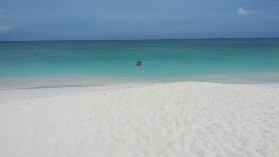 Pauline's Apartments Aruba: Eagle beach