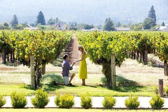 Napa Tours and Chauffeur: Kelham Vineyards