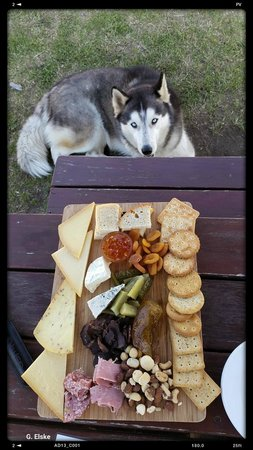 Walkerbay Estate and Birkenhead Brewery: Blue the Wolf Dog joined us for lunch