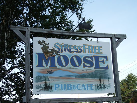 Stress Free Moose Pub & Cafe : Great food!!