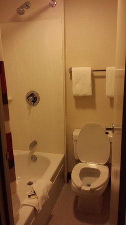 Red Roof Inn Toledo - Maumee: Tiny bathroom