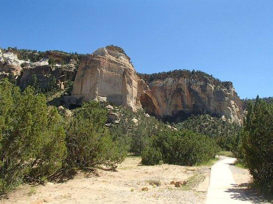 La Ventana Natural Arch : .