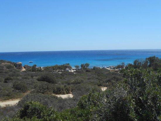 Area Marina Protetta Capo Carbonara: capo carbonara-panorama