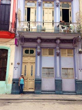 The Purple House: La Casa Purpura