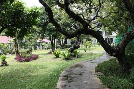 Nai Yang Beach Resort and Spa: отель