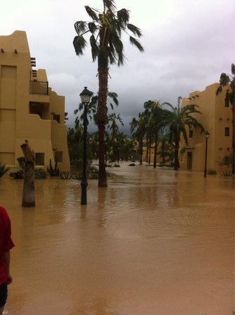 The Aftermath Of Hurricane Odile Picture Of Hotel Riu