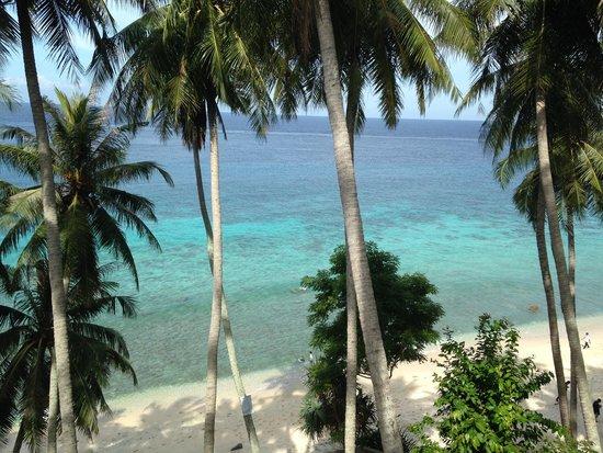 Casa Nemo Beach Resort and SPA: Beautiful View