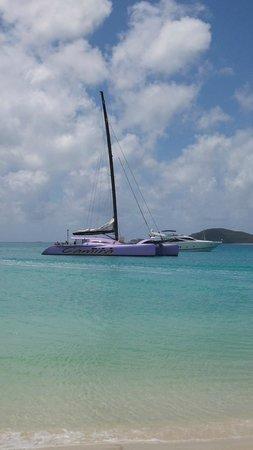 Cruise Whitsundays - Day Cruises : The Camira