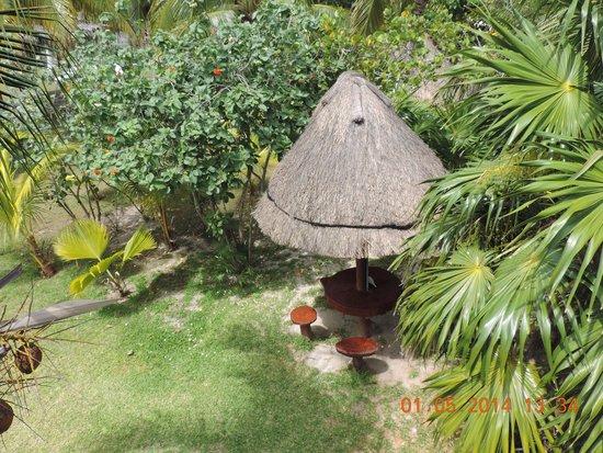Golden Paradise Camping Area: vista desde una habitacion