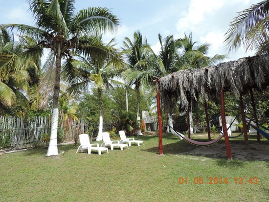 Golden Paradise Camping Area: área de camastros