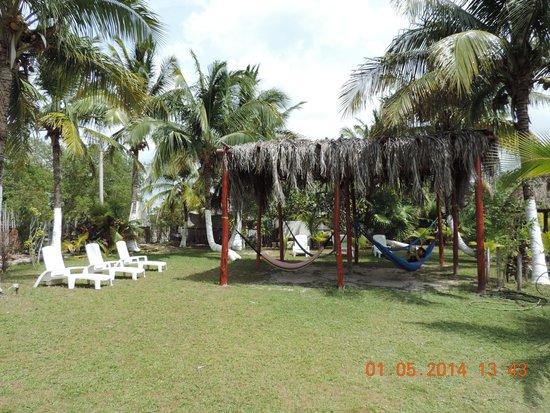 Golden Paradise Camping Area: asoliadero