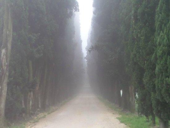 Villa Cordevigo Wine Relais : entrance