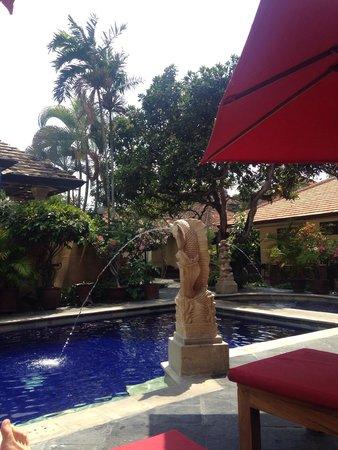 Yulia Beach Inn: Poolside