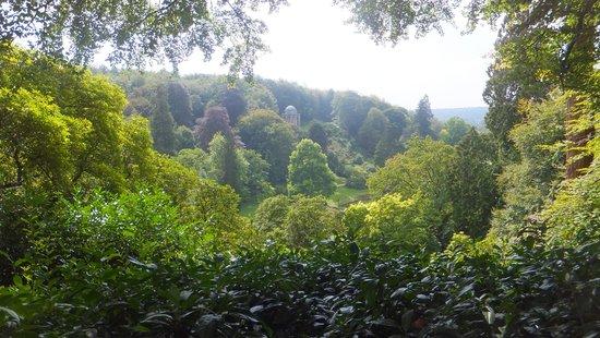 Stourhead House and Garden : good walk!