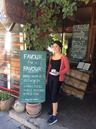 Cafe Safak: Lily doing a favour for a favour, helping out and enjoying the sun! Would recommend if you like 