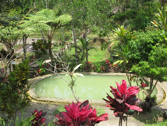 Angseri Hot Spring: Hotspring