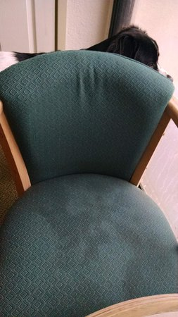 Red Roof Inn & Suites Brunswick I-95: Nasty stains on the chair seat.