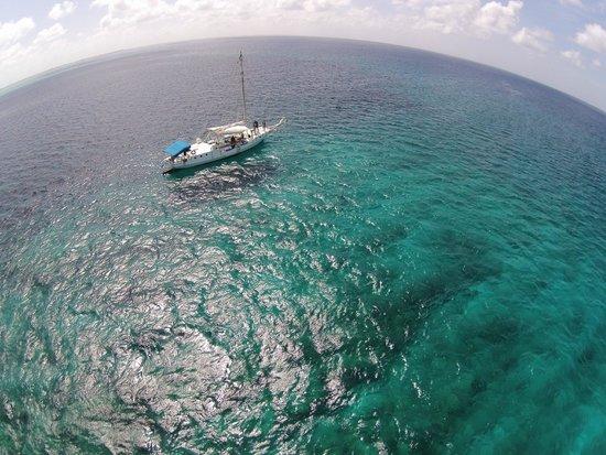 Sun Charters : DroneShot4