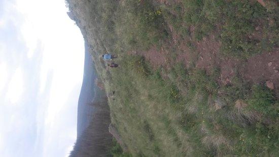 Oleo Ranch: Family hike on Tumble Creek Trail