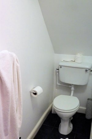 The Berry Head Hotel: The toilet you can't use standing up!
