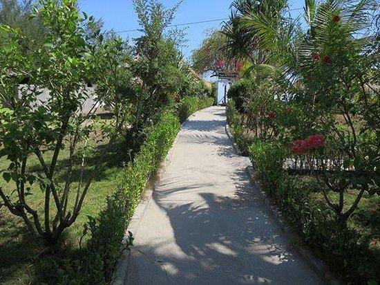 Pelangi Cottages And Restaurant : Weg zum Strand vom Garten aus