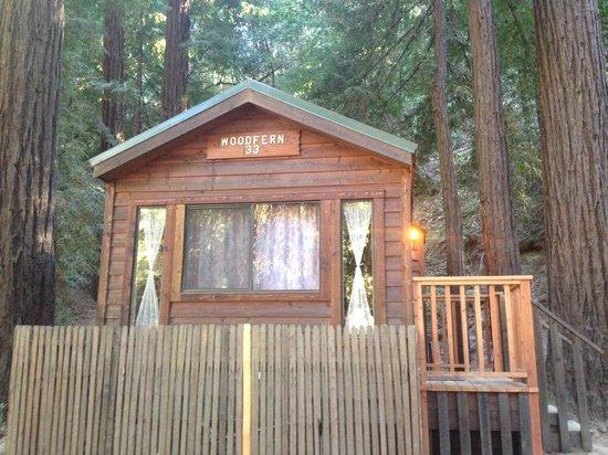 Fernwood Resort: Cabin 33