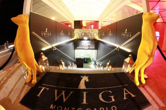 Twiga Monte Carlo