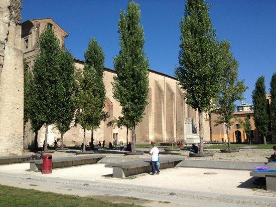 Palazzo della Pilotta : Palazzo con alberi che simulano le colonne di un ex chiesa