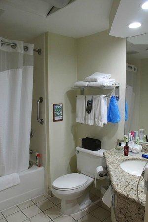 Holiday Inn Express San Jose Airport : Bathroom (Room 134)
