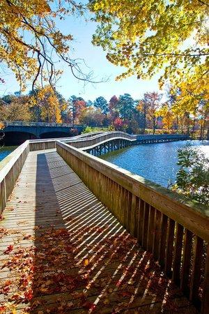 Newport News, VA: Noland Trail