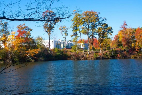 Newport News, VA: View of the Museum from Noland Trail