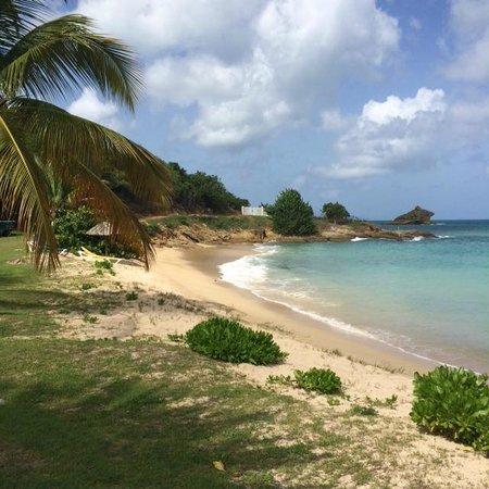 Hawksbill Bay: Paradise!