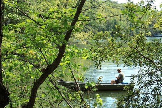 Newport News, VA: Lake Maury