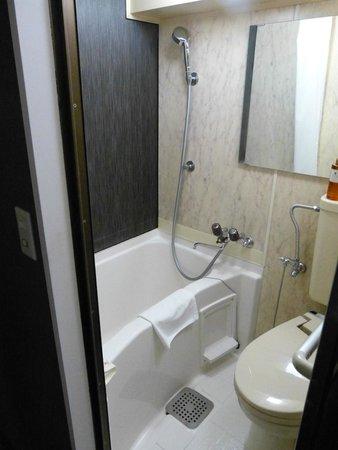 My Stays Asakusabashi : Visão do banheiro
