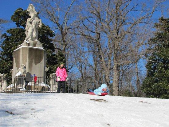 Newport News, VA: Sled riding at the Park